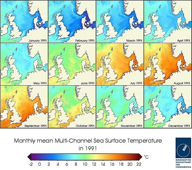 Monats-Temperaturkarten des Jahres 1991