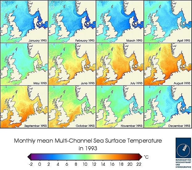 Monats-Temperaturkarten des Jahres 1993