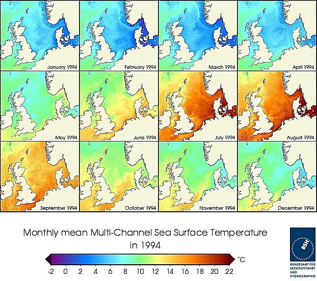 Monats-Temperaturkarten des Jahres 1994