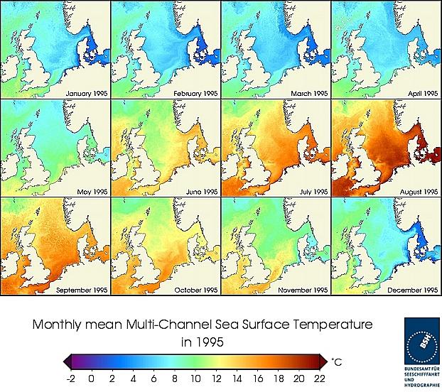 Monats-Temperaturkarten des Jahres 1995
