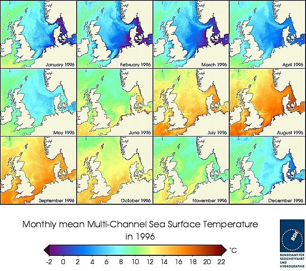 Monats-Temperaturkarten des Jahres 1996