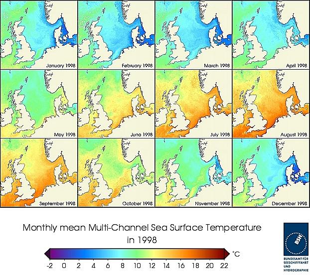 Monats-Temperaturkarten des Jahres 1998
