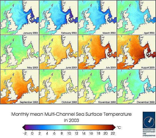 Monats-Temperaturkarten des Jahres 2003