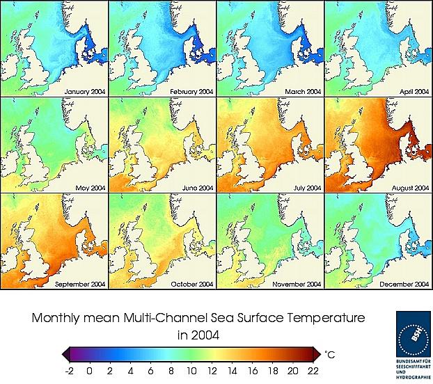Monats-Temperaturkarten des Jahres 2004