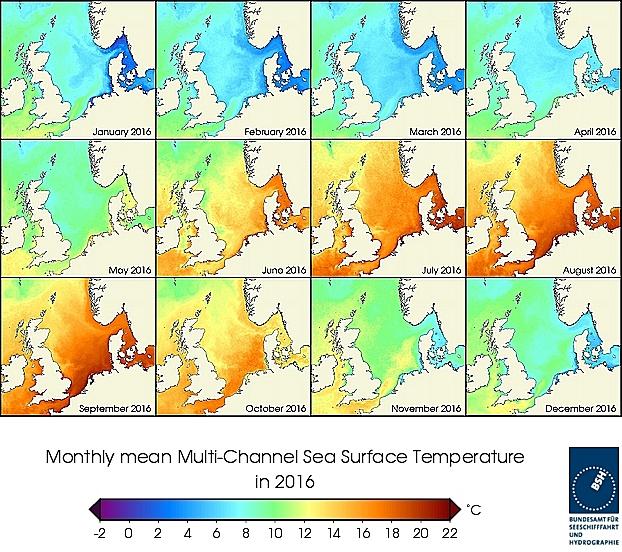 Monats-Temperaturkarten des Jahres 2016
