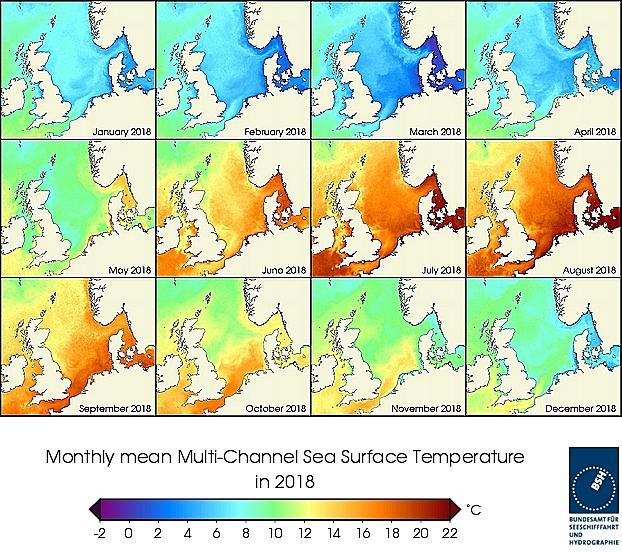 Monats-Temperaturkarten des Jahres 2018